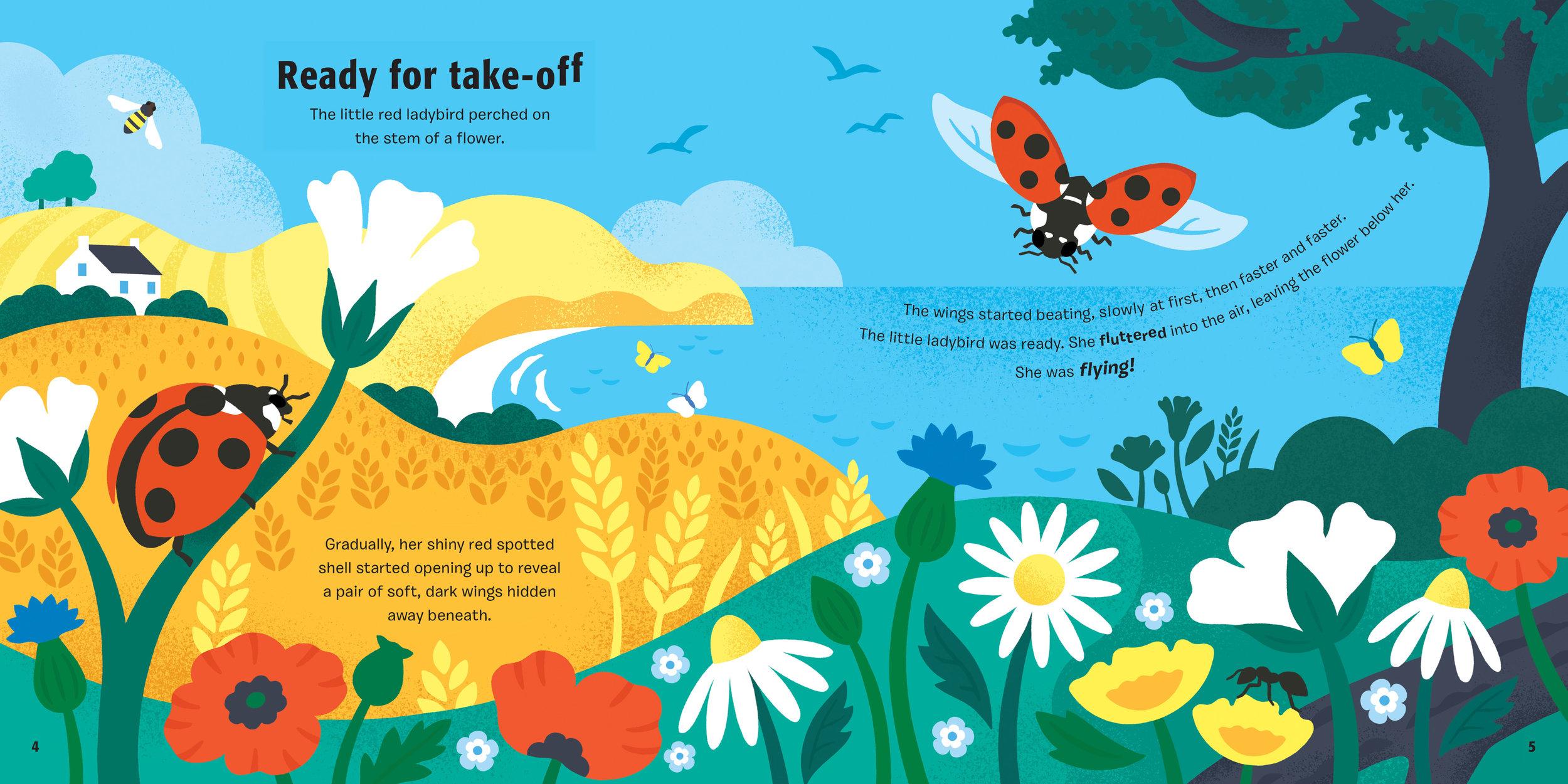 ladybird-spread1.jpg