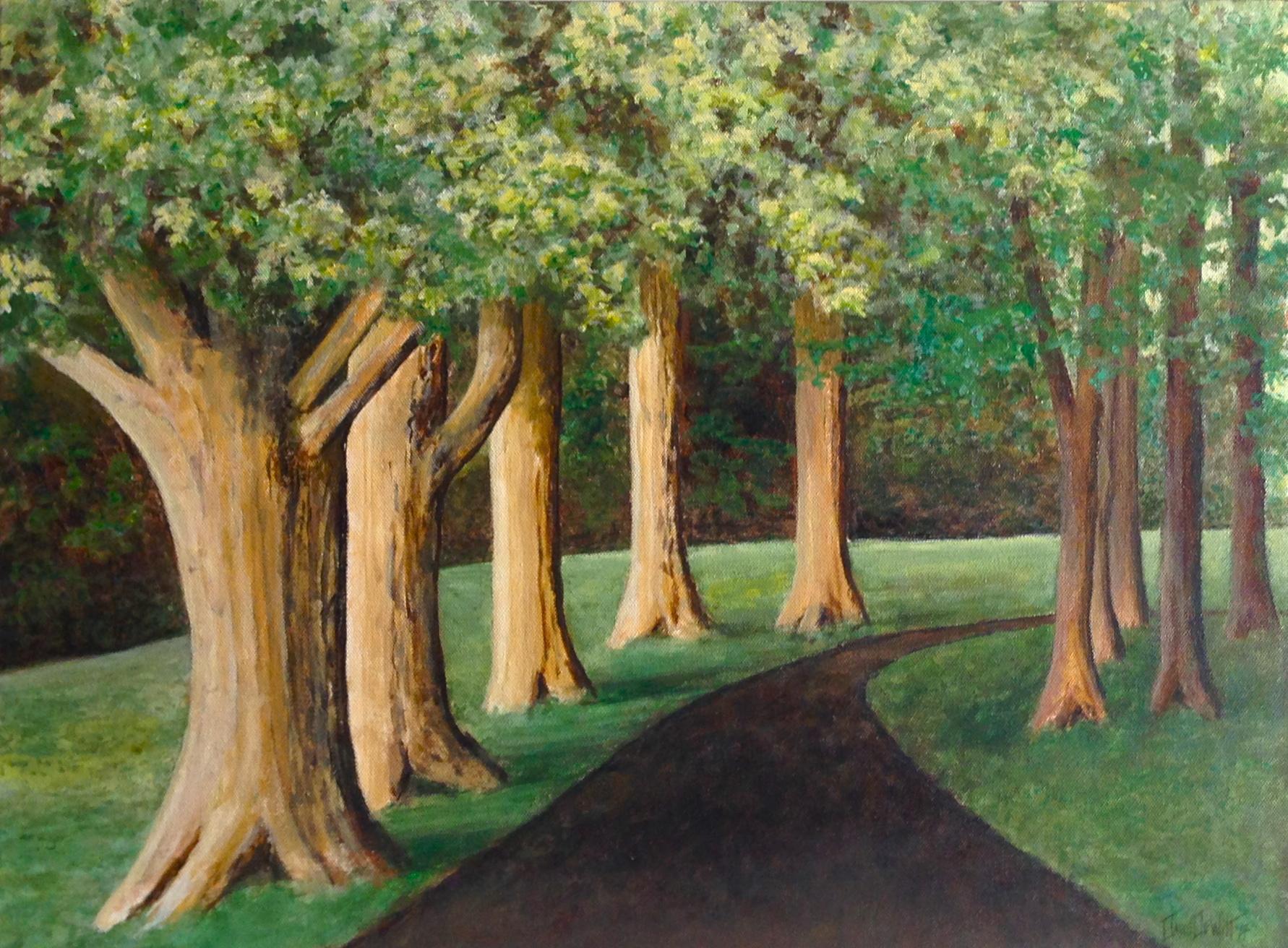 Trail of Oaks, by David DeWitt