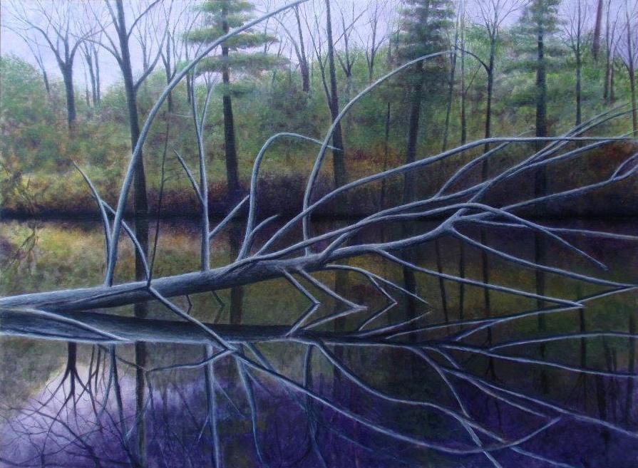 Tree in Water by David DeWitt