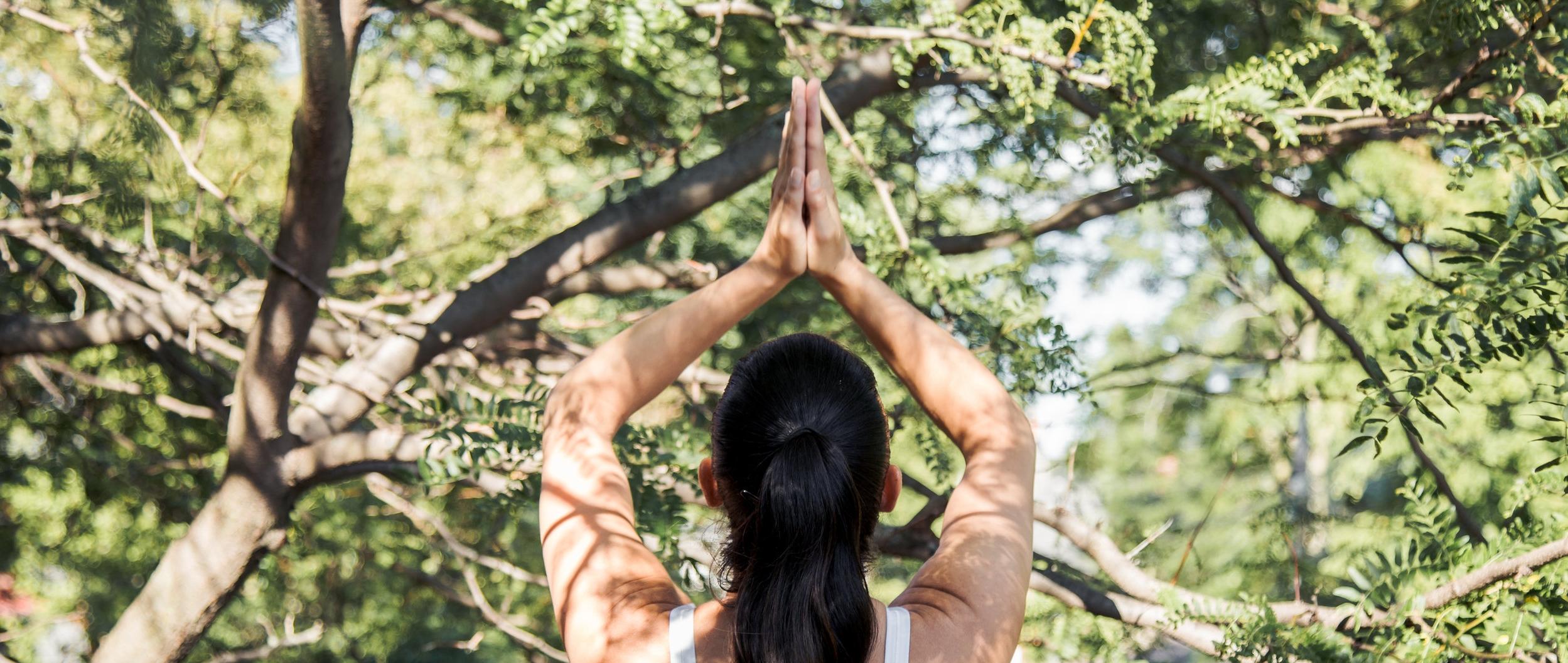 Meditation Workshop - 6 hours