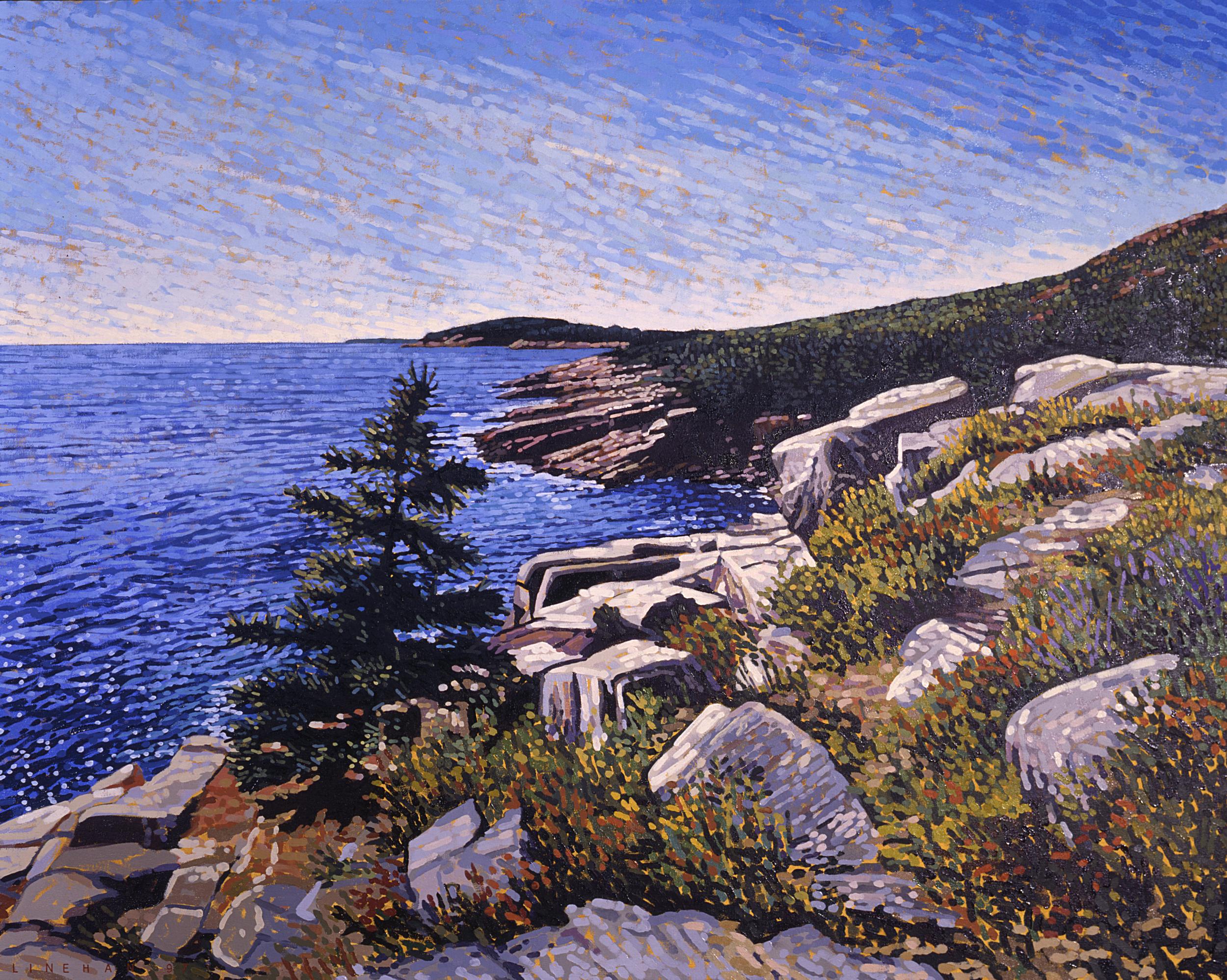 Acadia Facing Otter Cliffs