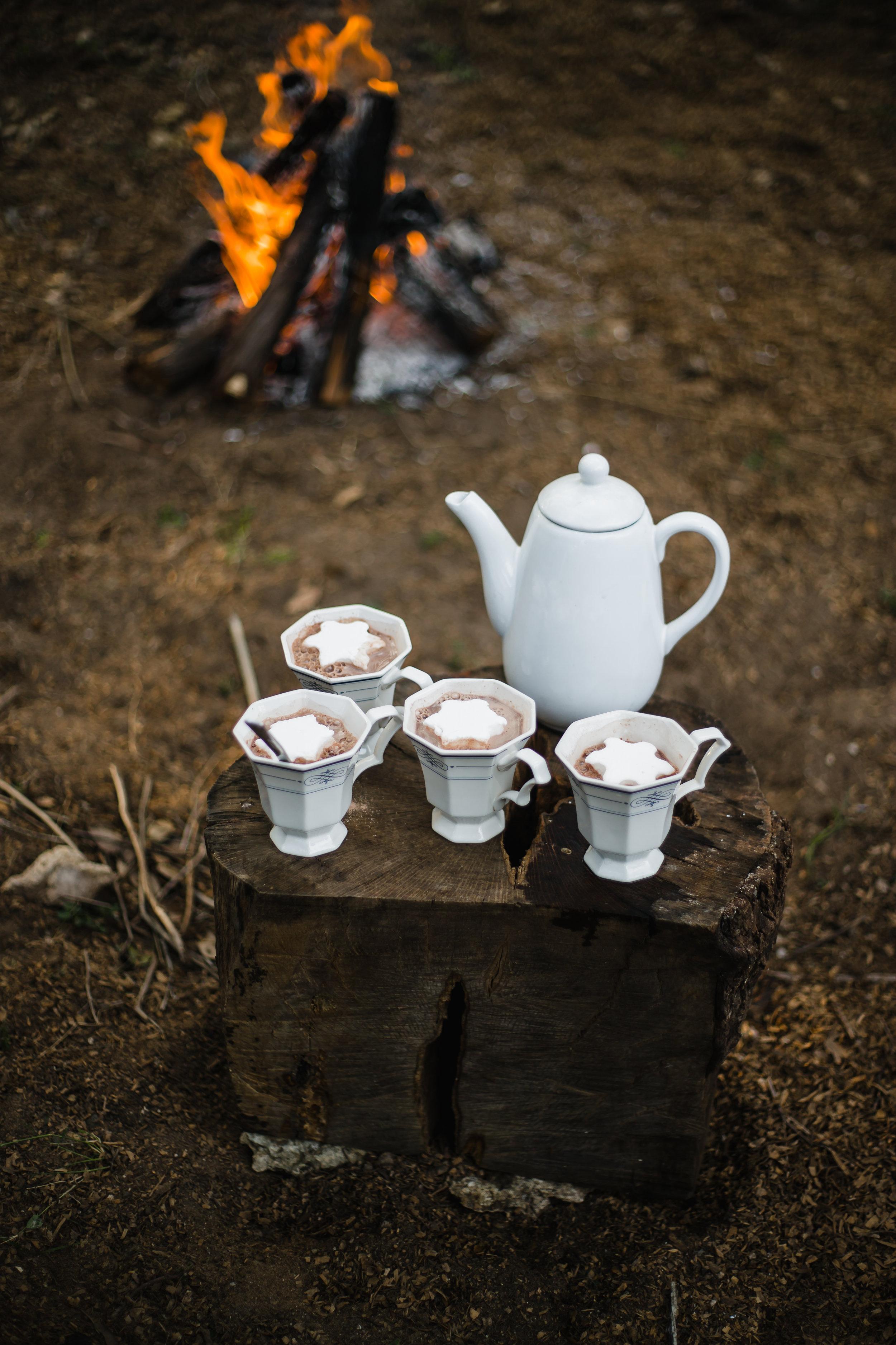 peppermint_marshmallows_bonfire-56.jpg