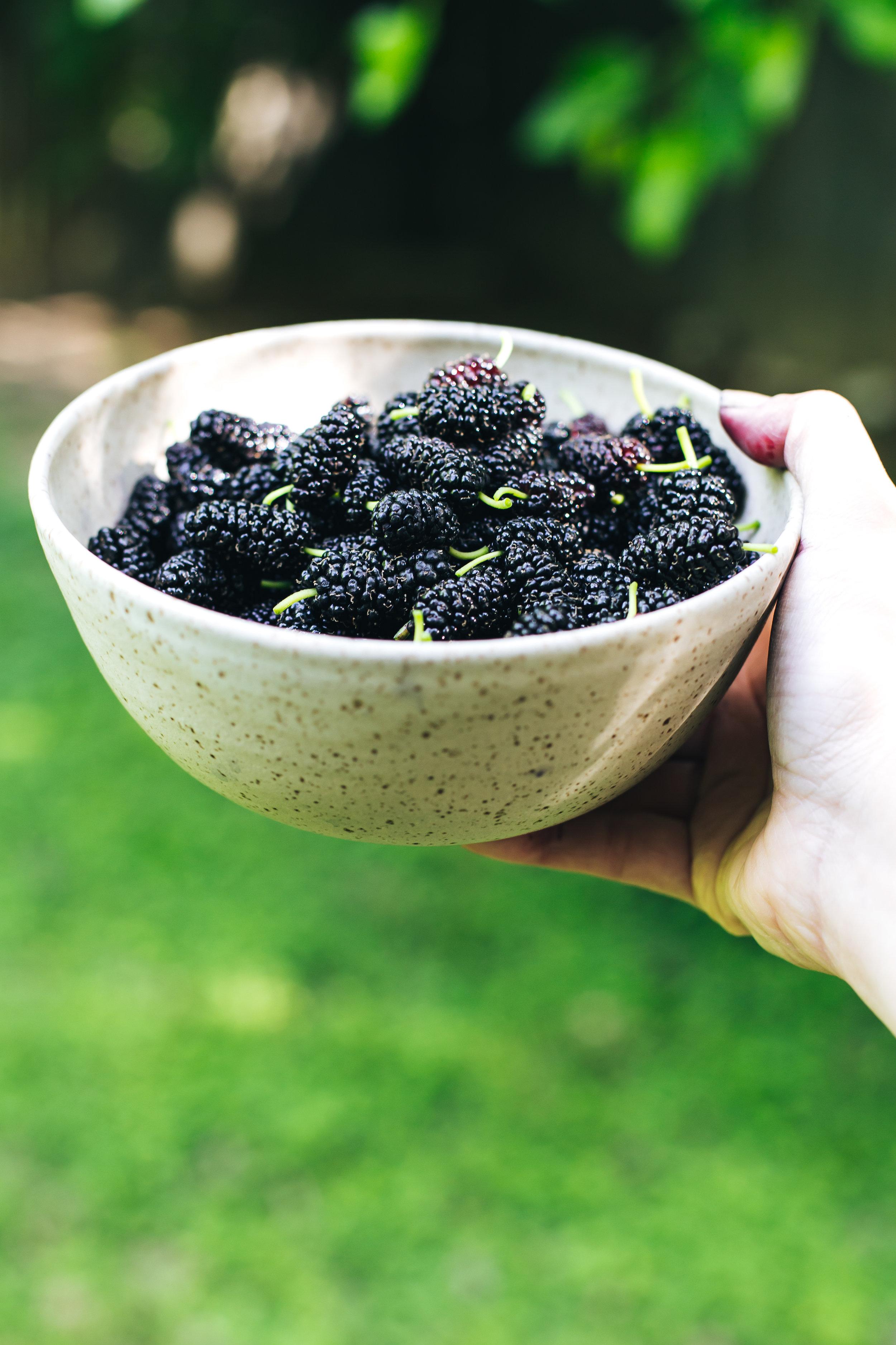 mulberry_yogurt_lemon_cake-13.jpg