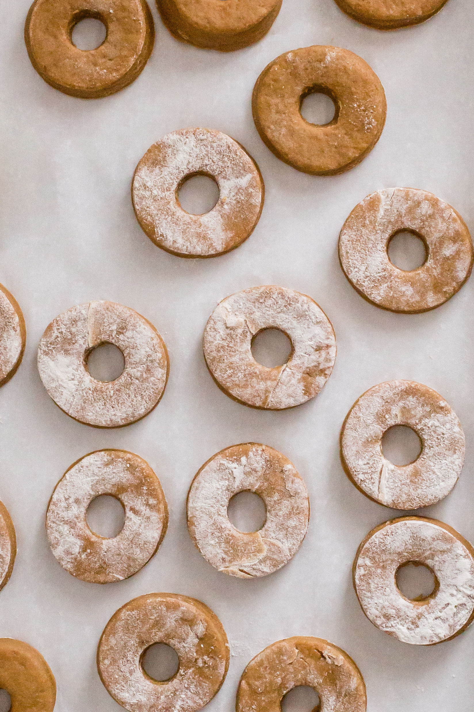 gingerbread_cake_donuts-3.jpg