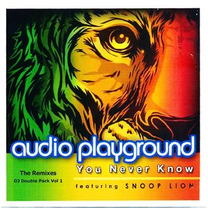 "Audio Playground ft. Snoop Lion ""You Never Know (Victor Dinaire & Bissen Remix)"" • Sony • 2013"
