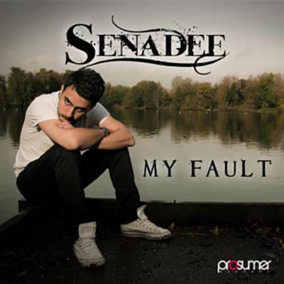 """Senadee """"My Fault (Bissen Remix)"""" • Prosumer • 2010"""