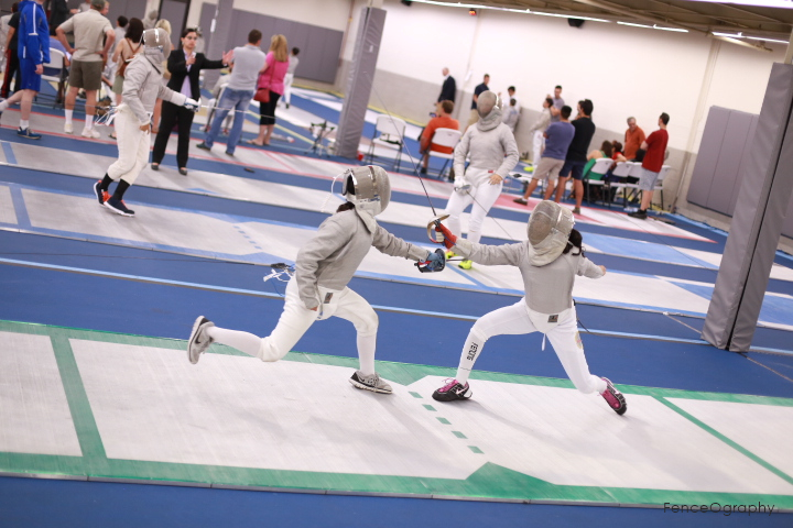 Olympic Fencing Strips.JPG