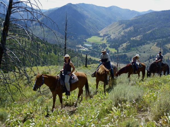horsebackview_op_596x447.jpg