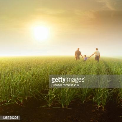 Photo by FreezeFrameStudio/iStock / Getty Images