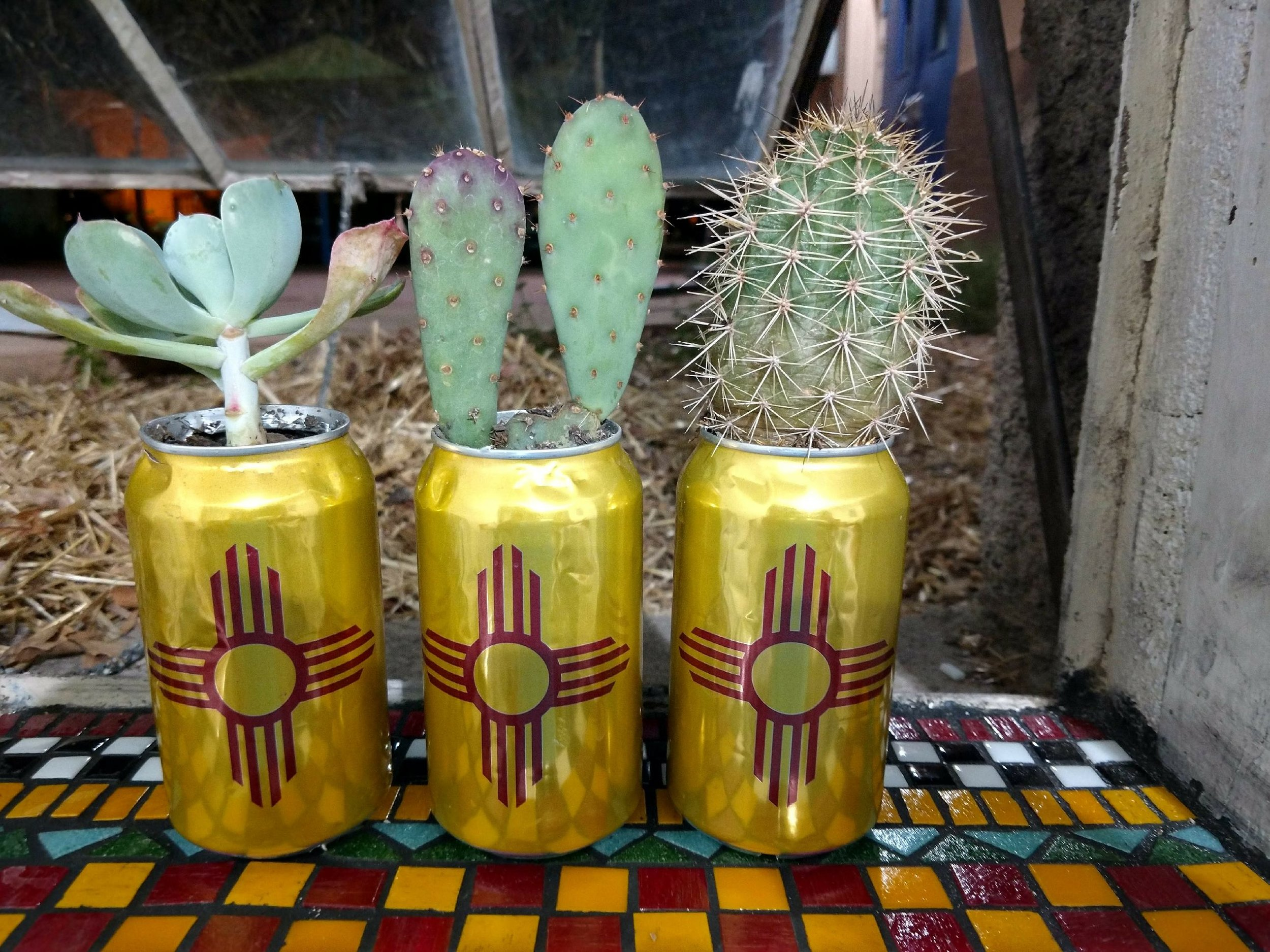 studio window beer cans.jpg