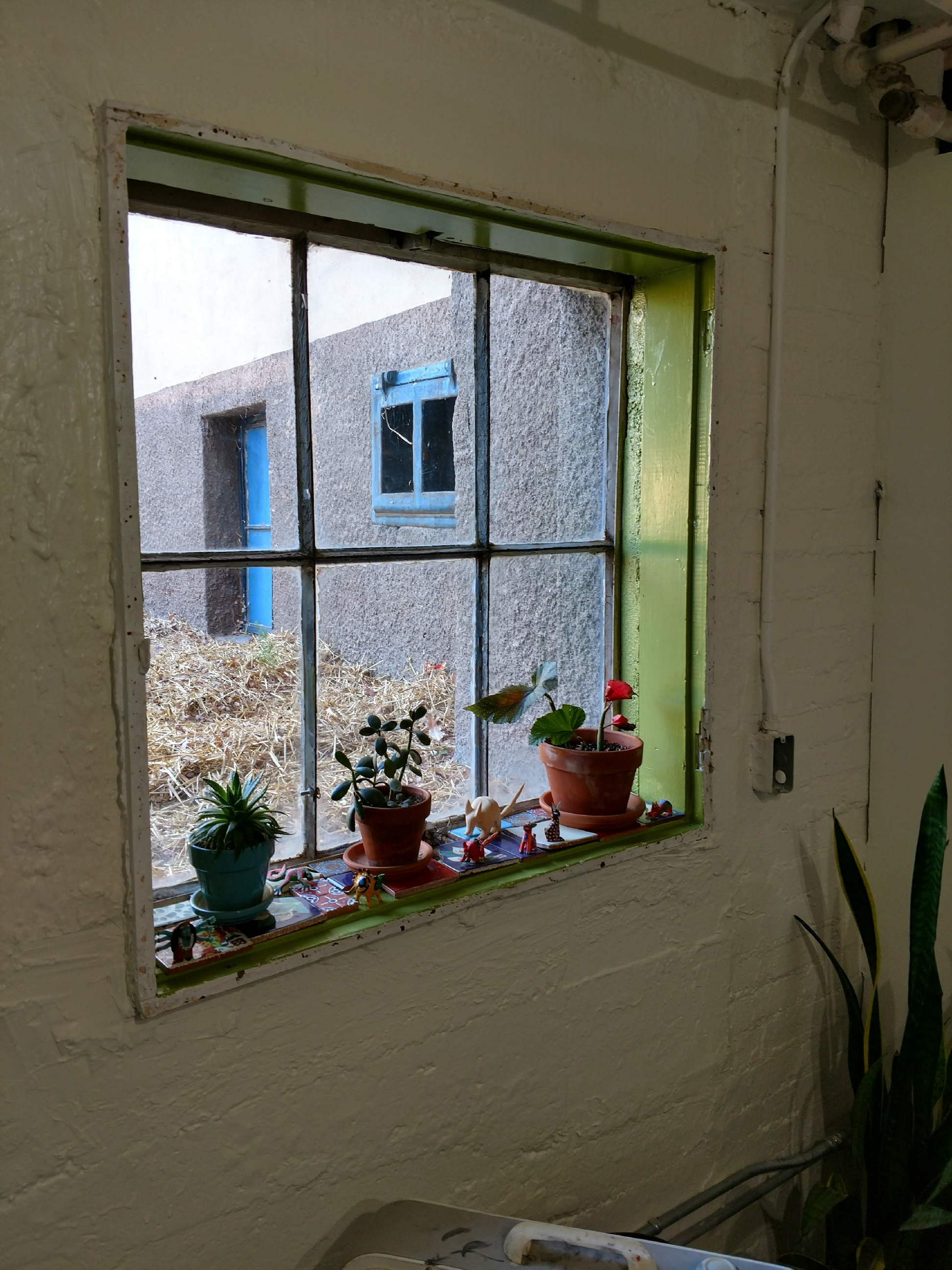 studio  window3.jpg