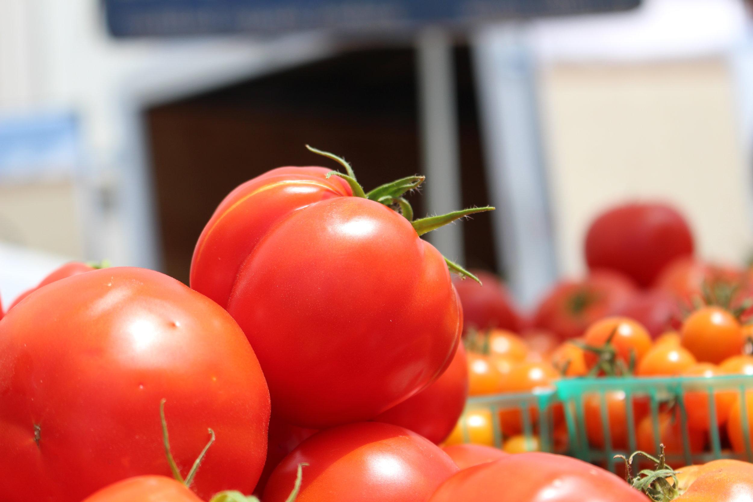 love aunt maggie | tomato