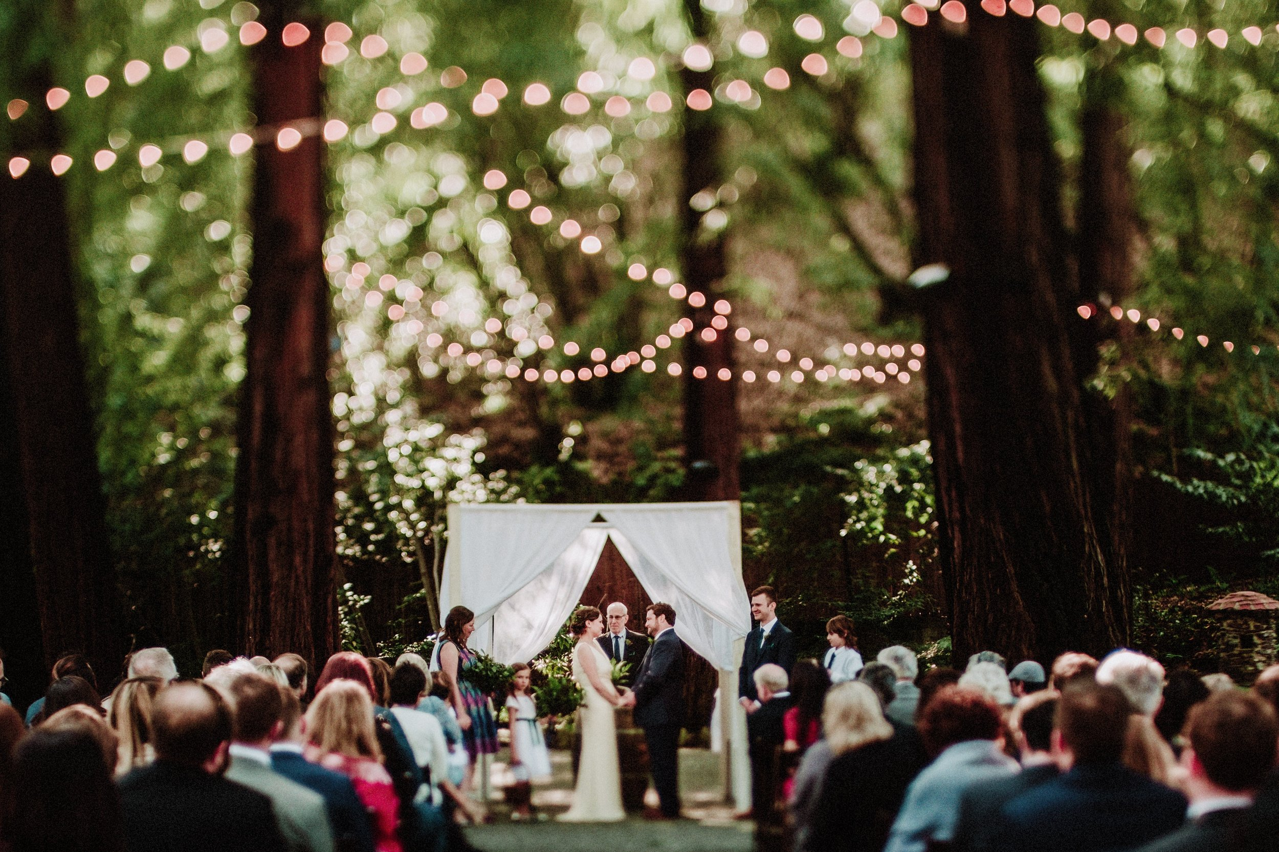 the redwood wedding of maggie and victor 255.jpg