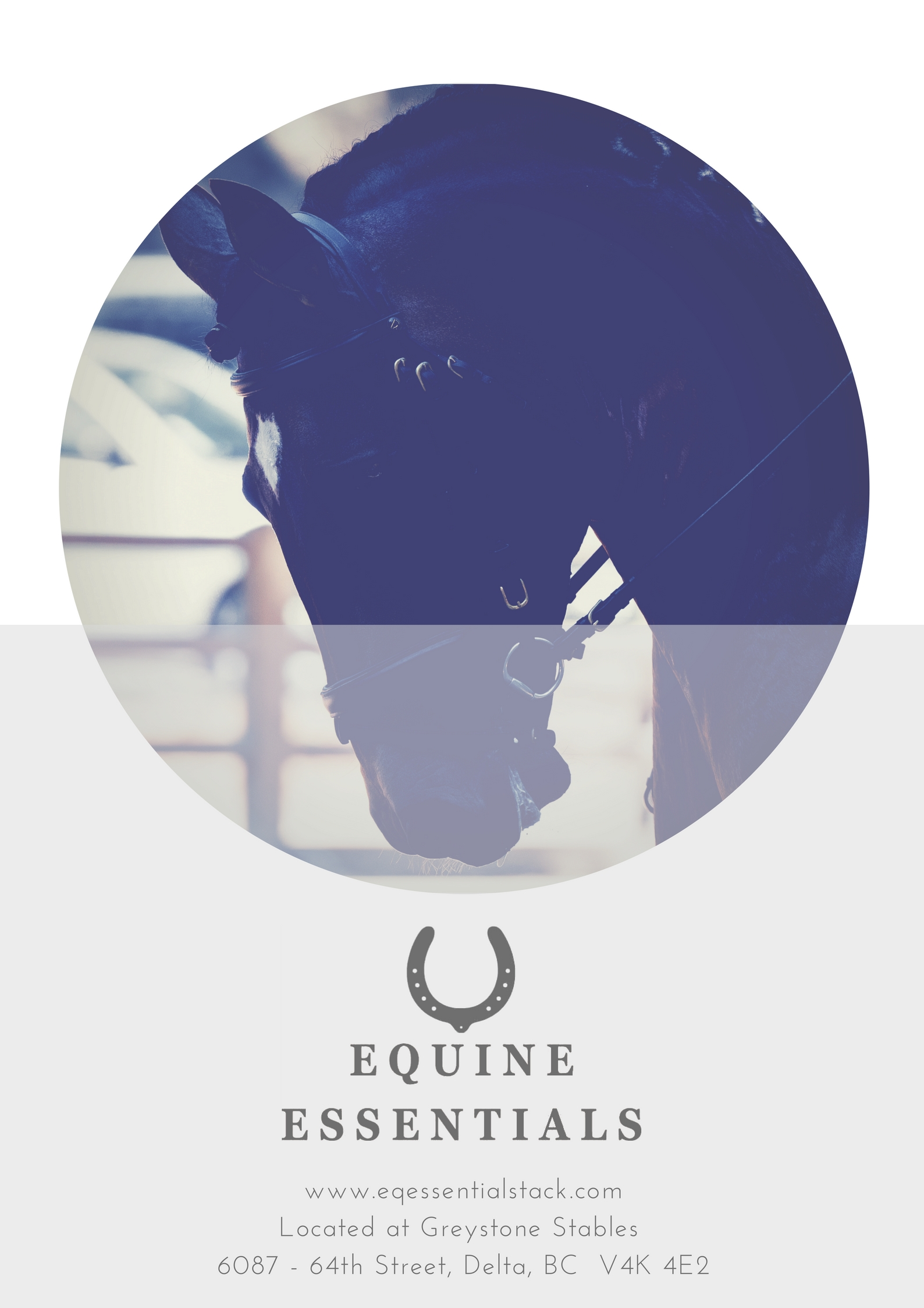 Equine Essentials One Page Ad.jpg