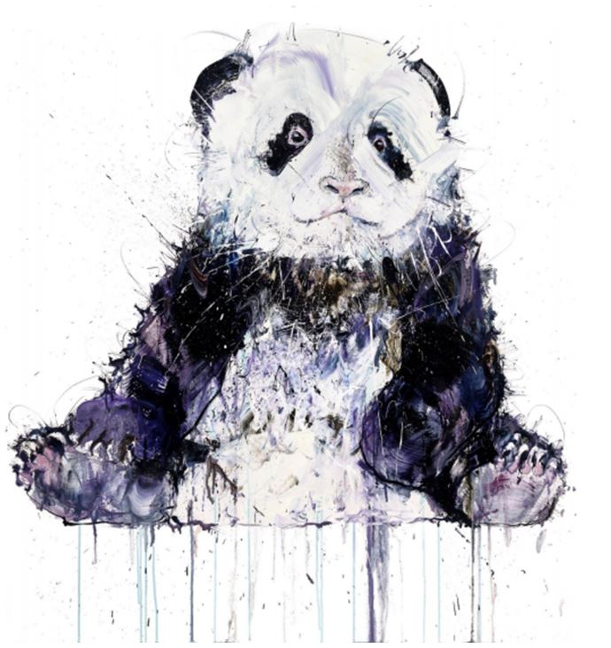 """""""Young Panda II"""" Dave White -  Click To Buy"""