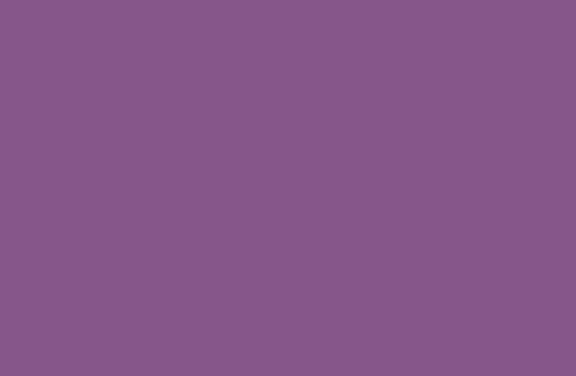 Dulux Pamplona Purple 3.JPG