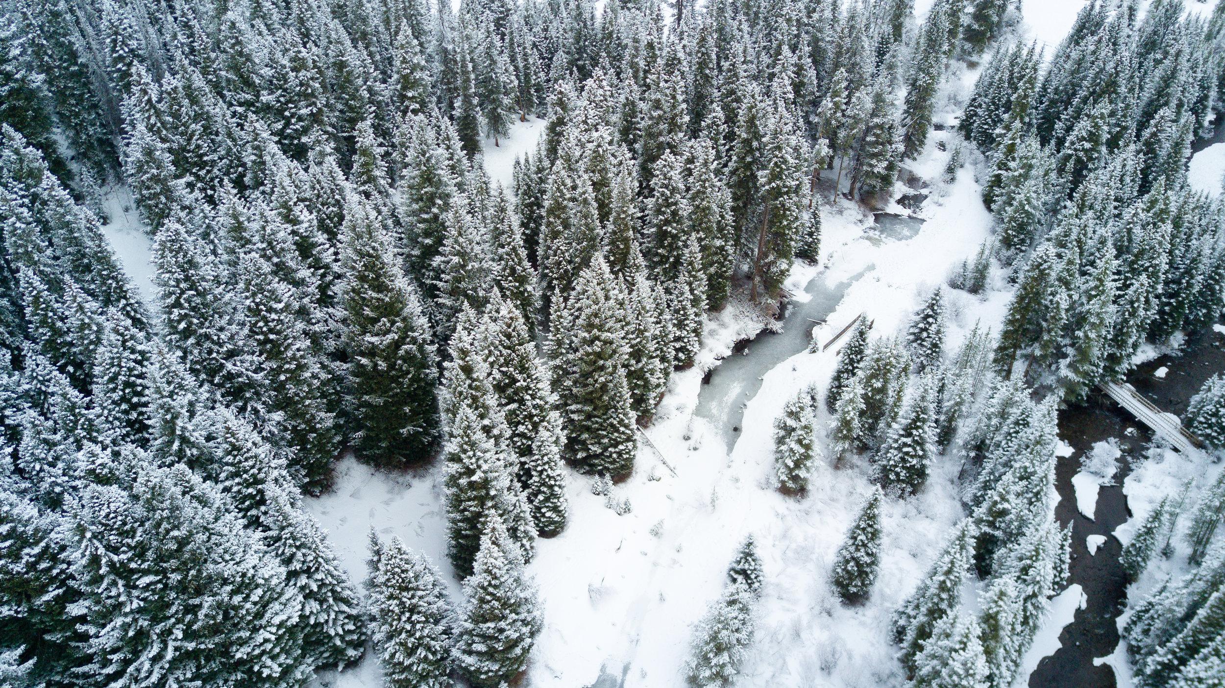 breck-3.jpg