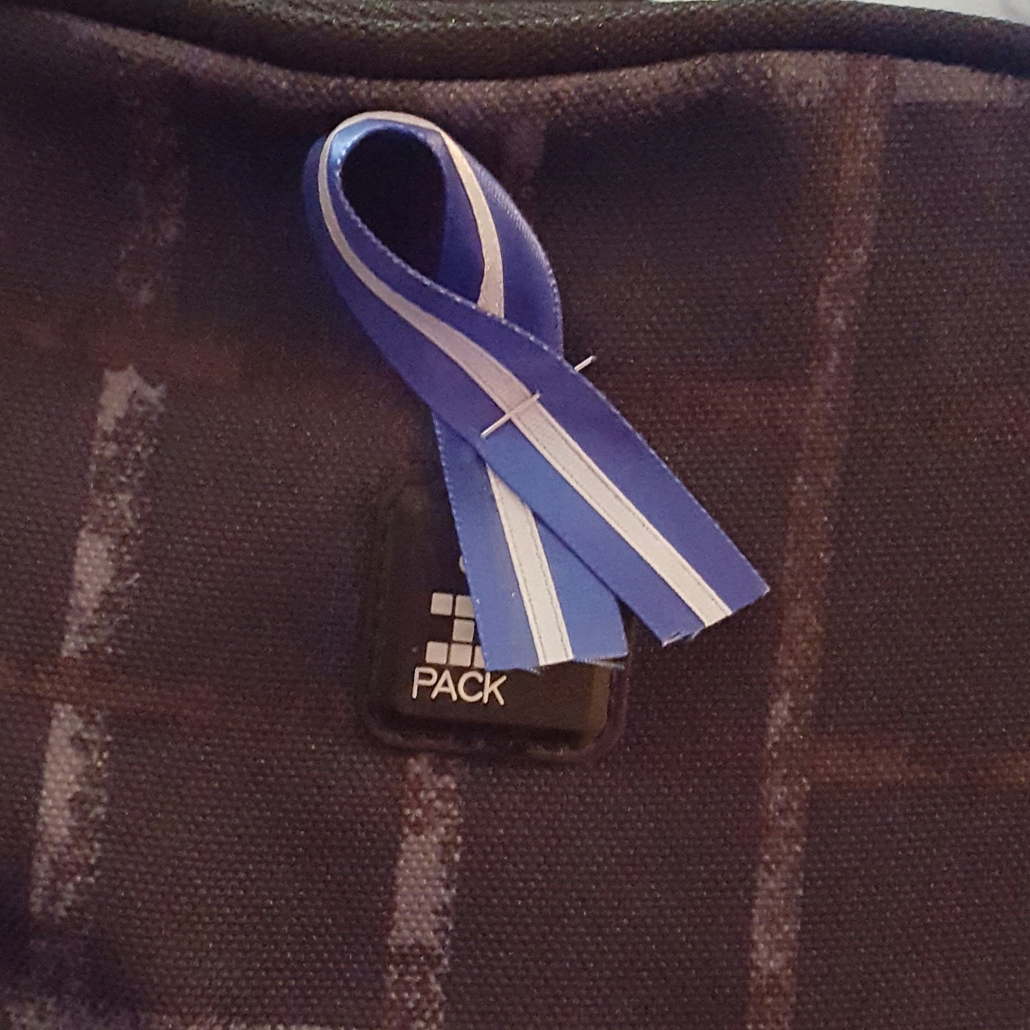 A Thin White Line ribbon that I have pinned to my backpack, my lunch box, my work ID, and hanging in my car to always keep Hinal with me and to always keep her spirit and memory alive.
