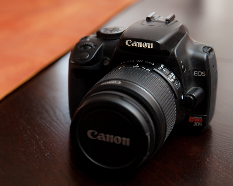 """My old Rebel, about a decade old now, was my first """"real"""" digital camera. Still works."""