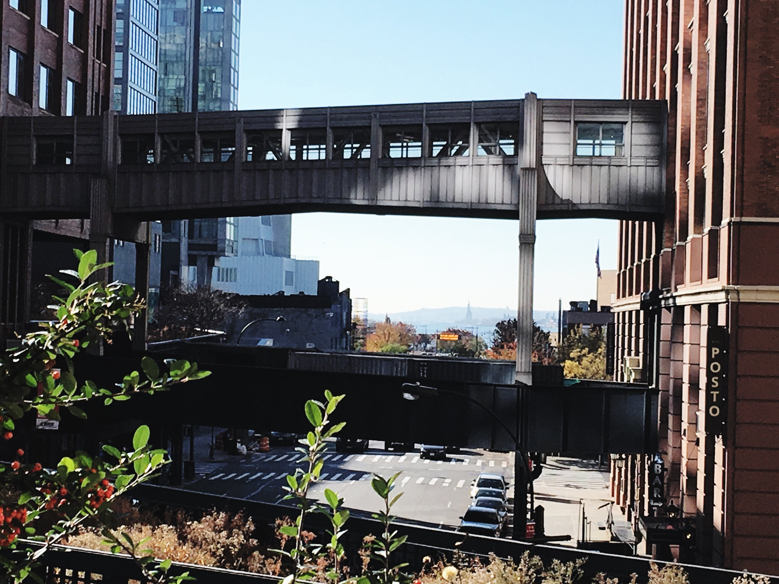 Saturday morning weather was perfect so I walked the 1.45 mile long  High Line Park   built on a historic freight rail line elevated above the streets on Manhattan's West Side.