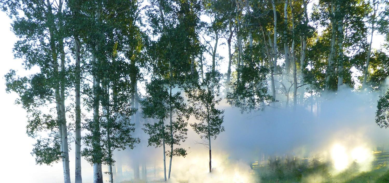 Smoke Efx w 2930.jpg