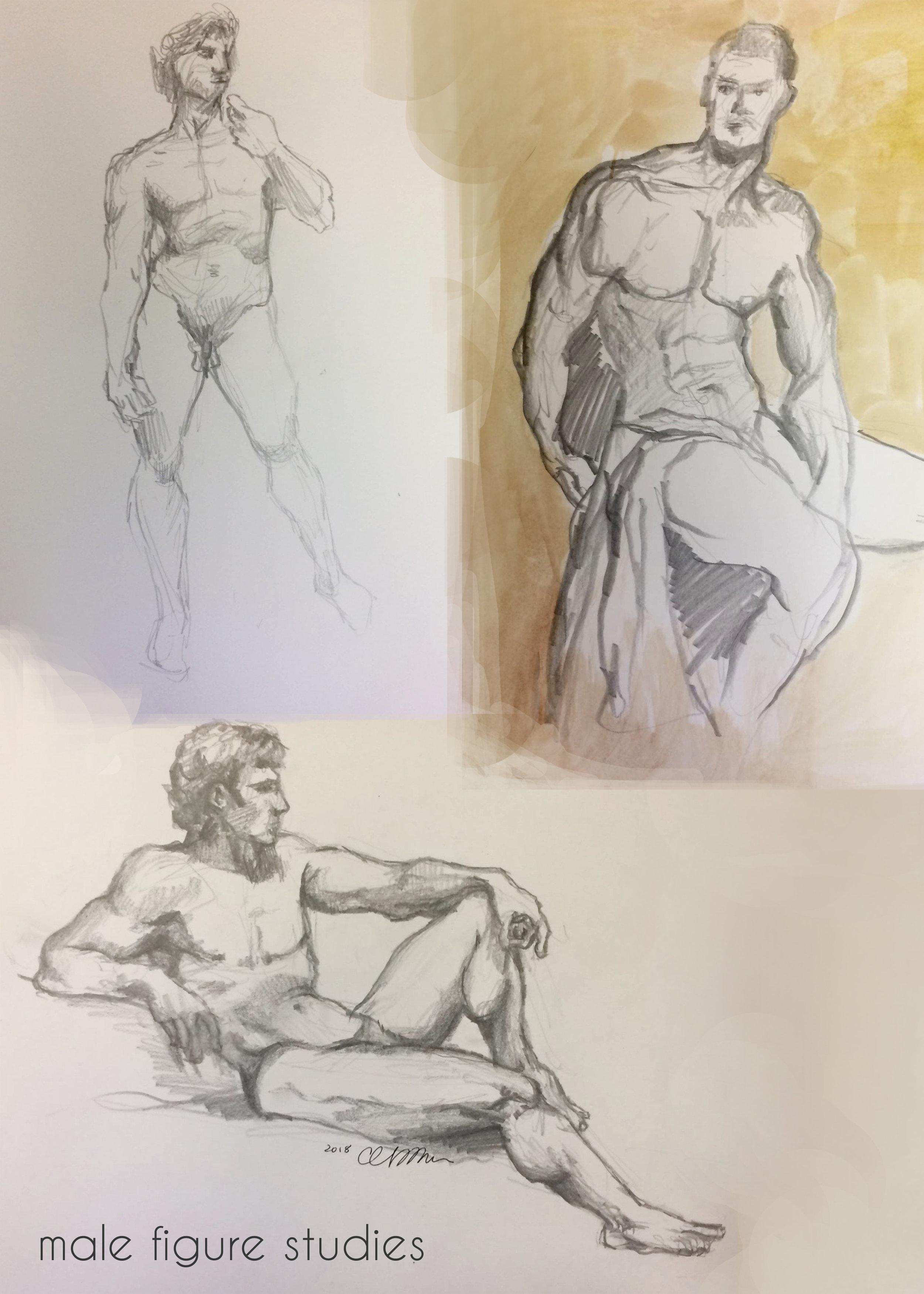 male fig studies.jpg