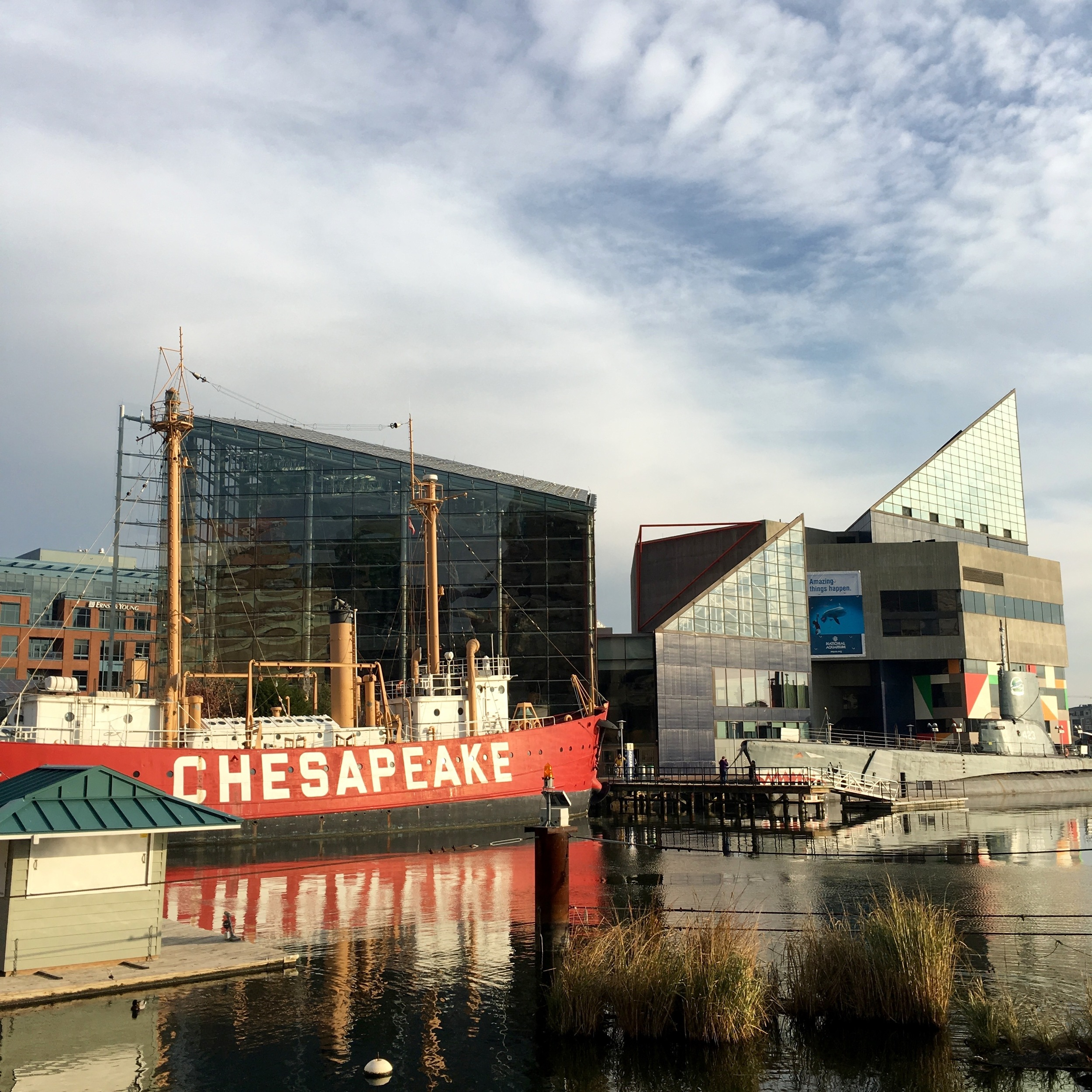Harbor, historic ships, and National Aquarium in Baltimore