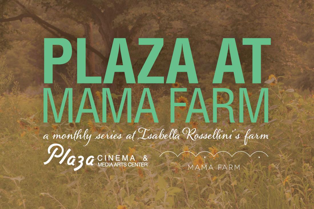 plaza_mama_general_header.jpg