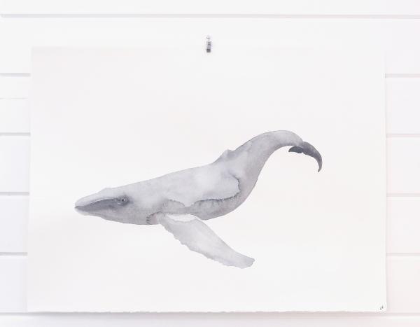 whale hanging .jpg