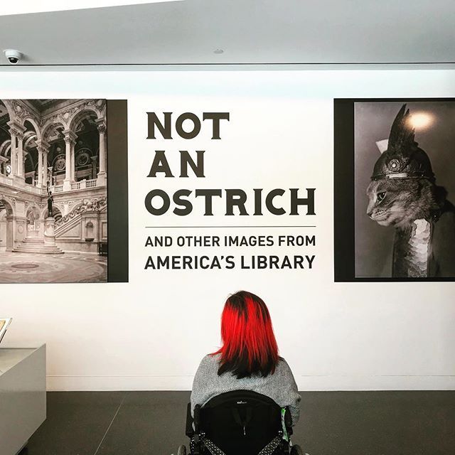 """Not an Ostrich"" photography exhibit at Annenberg Space for Photography with selections from Library of Congress. @librarycongress @annenbergspace"