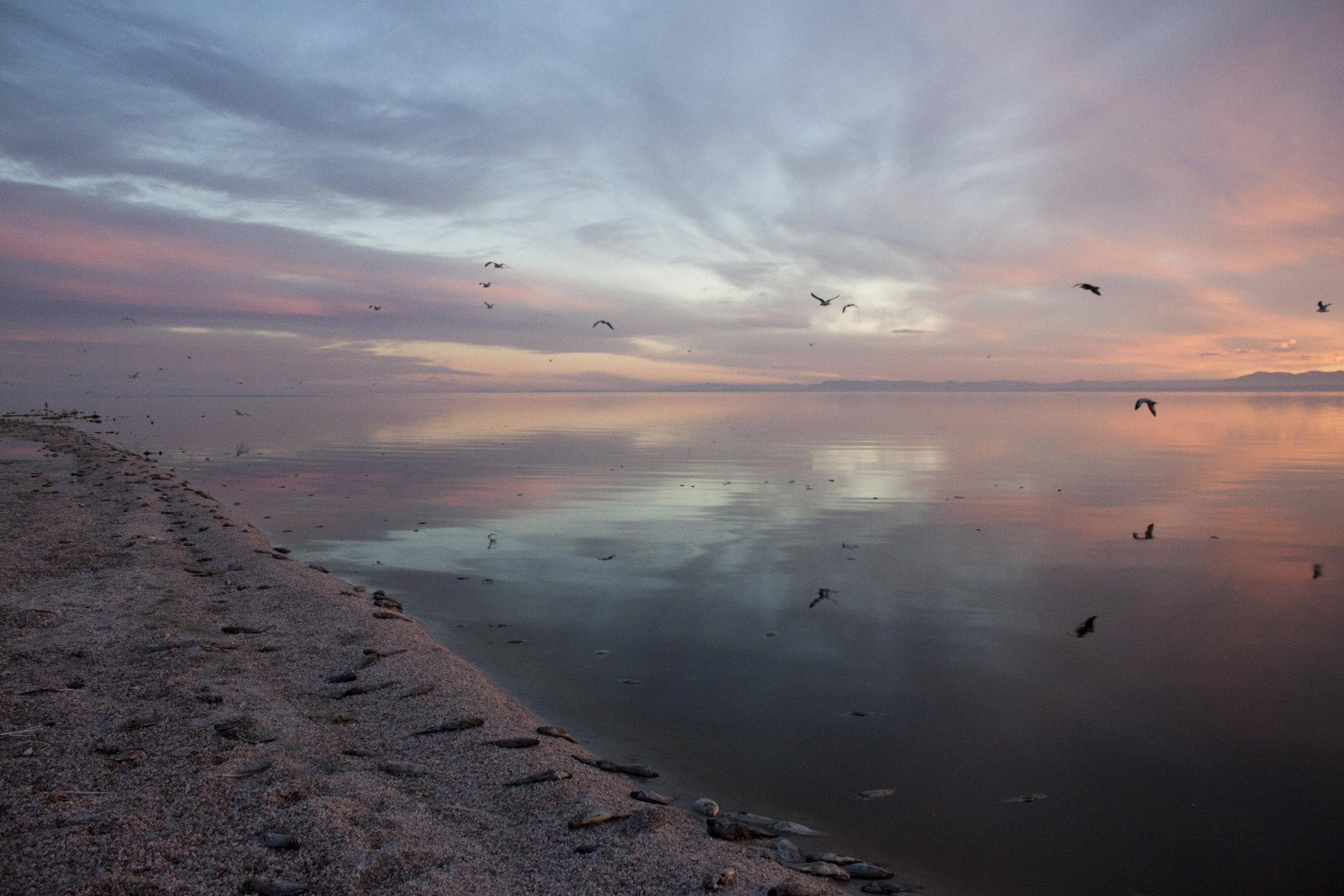 Sunset at the Salton Sea, Mecca, California