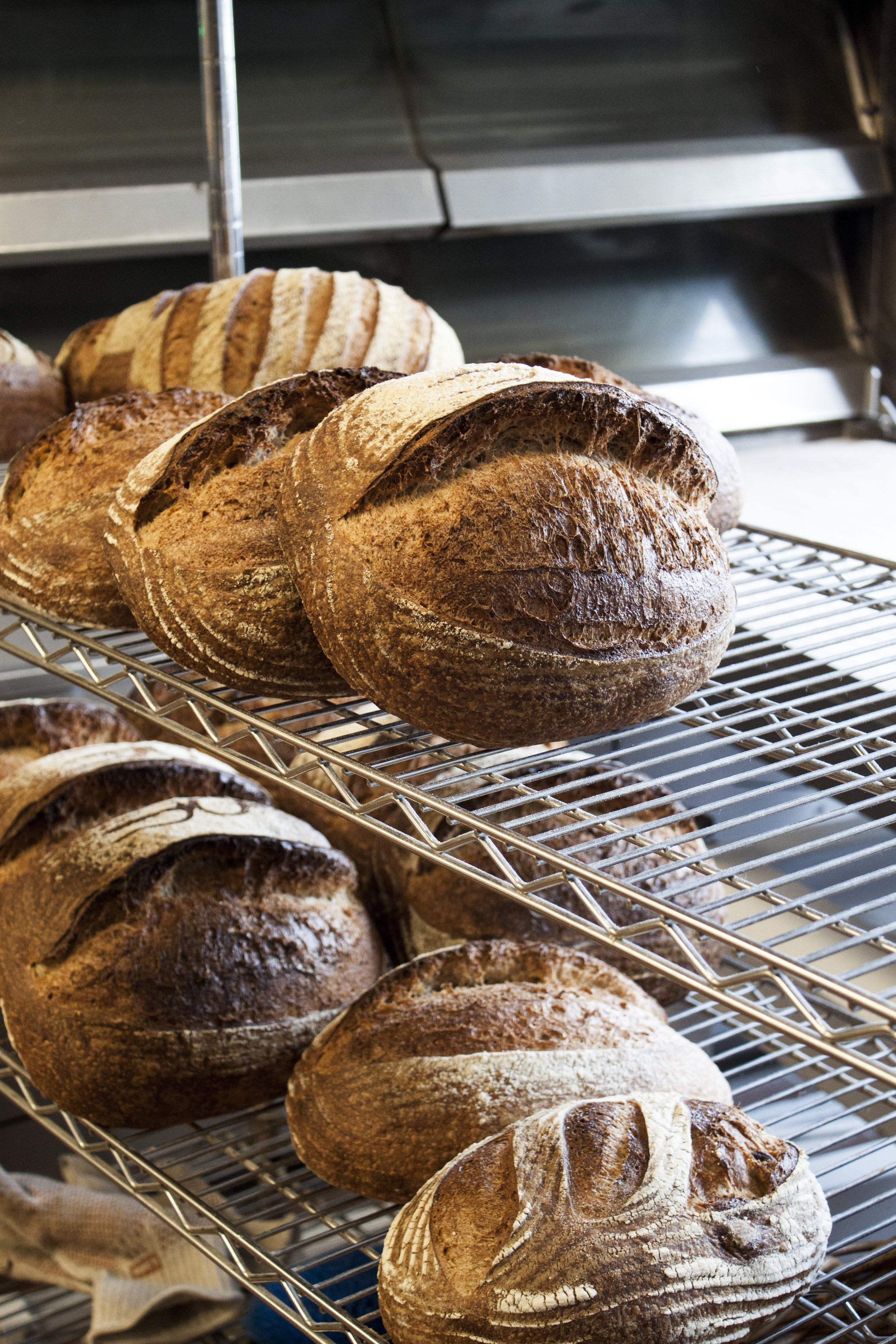 bob's well bread bakery, best california bakeries, los alamos restaurants, los alamos ca, where to eat in los alamos, los alamos travel guide, los alamos dining