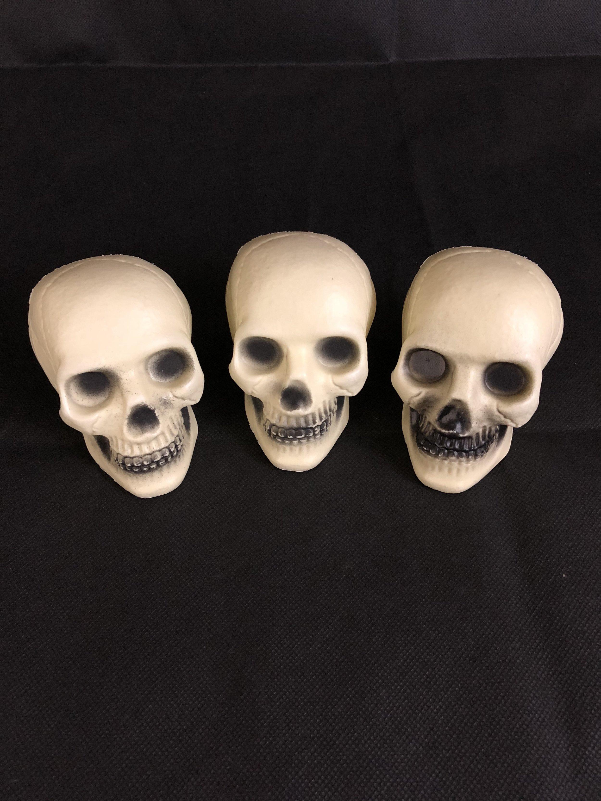 DIY Halloween project - skulls.jpg