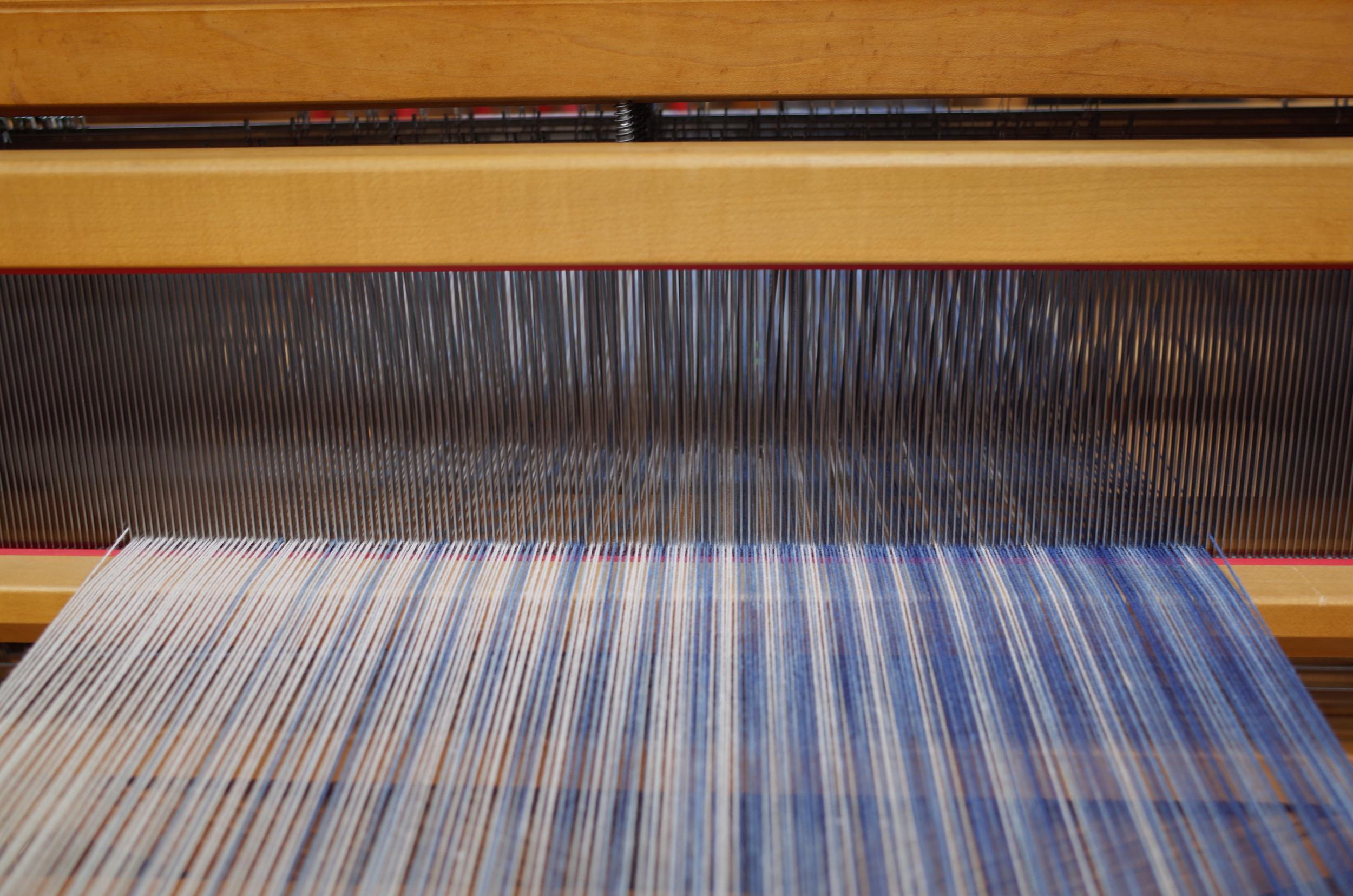 Warp through the reed.