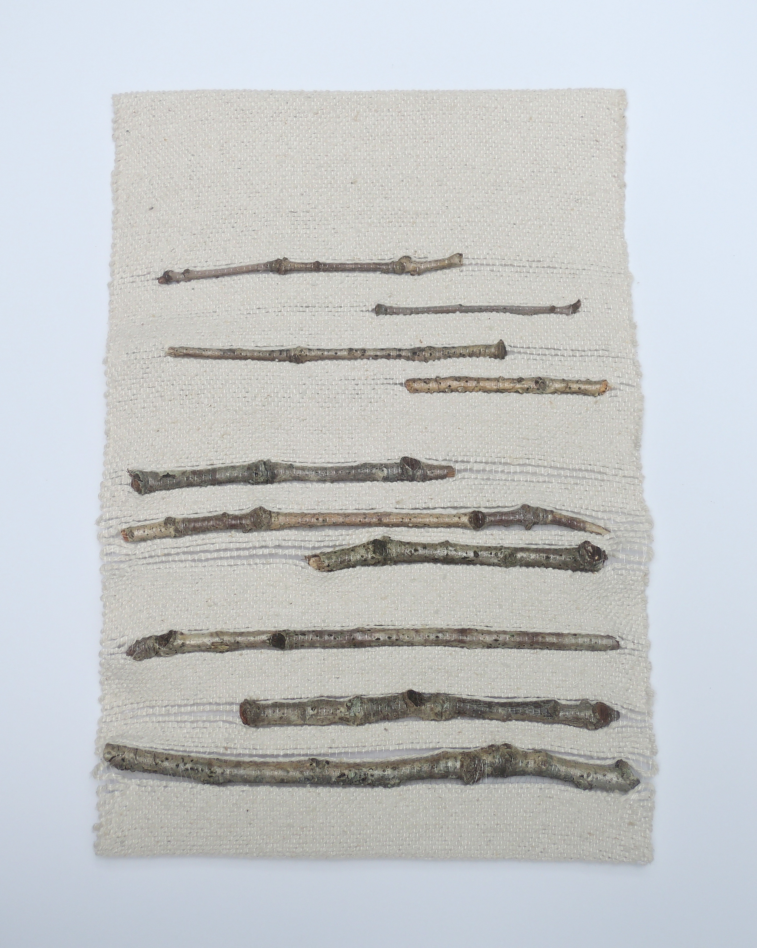 Finished twig weaving: Found and Fancy (Materials), silk noil, twigs, monofilament, 2014.