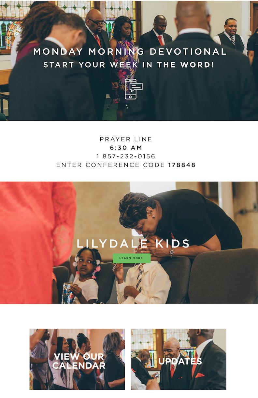 Lilydale Web Mock New 1.jpg
