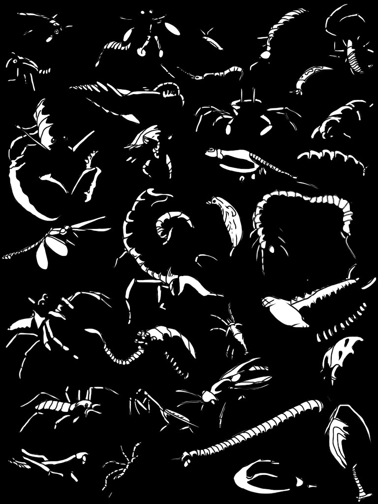Arthropod Art (Highlights)