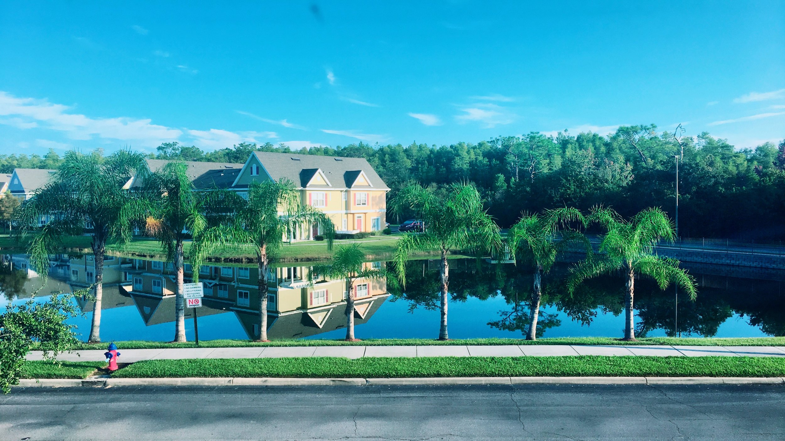 Beautiful Sunshine State - this is our view from our room when we went to Orlando for a weekend.