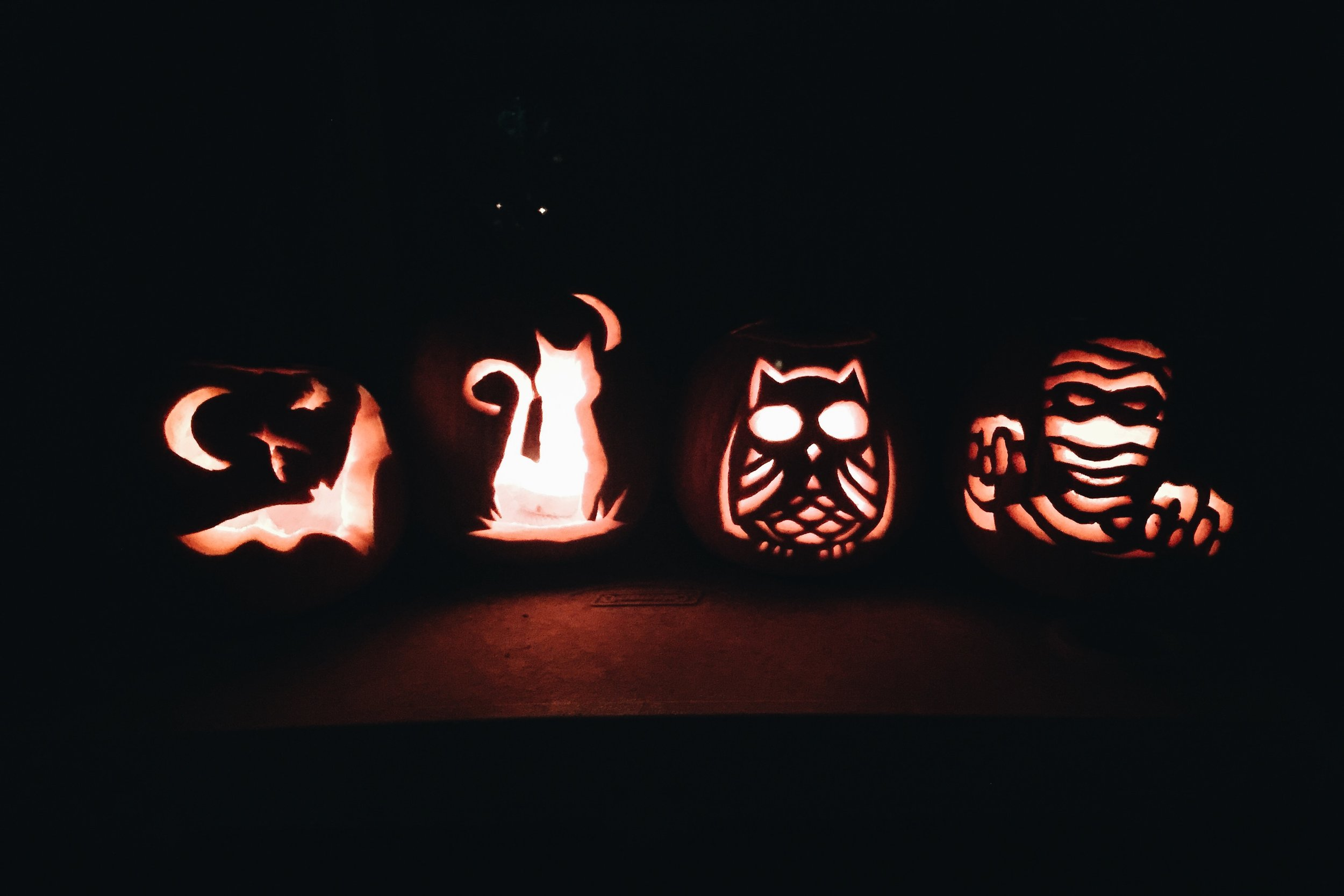 First time carving pumpkins with our friends here in Miami!