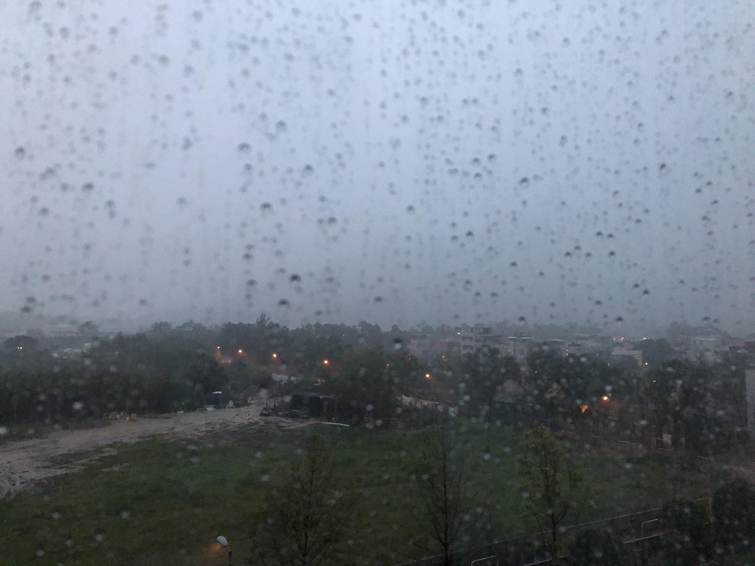 Endless Summer Rain