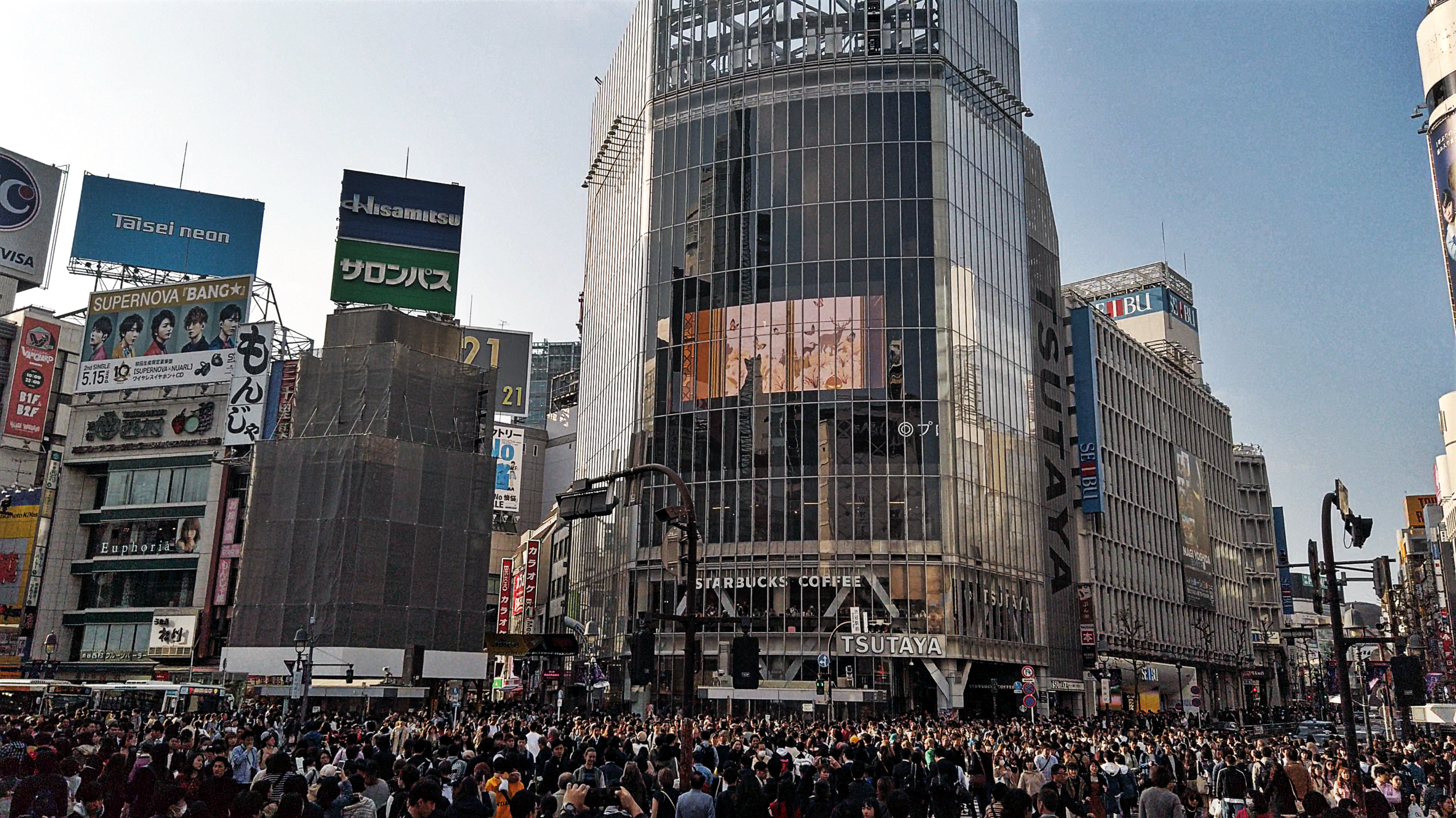 Shibuya Crossing -
