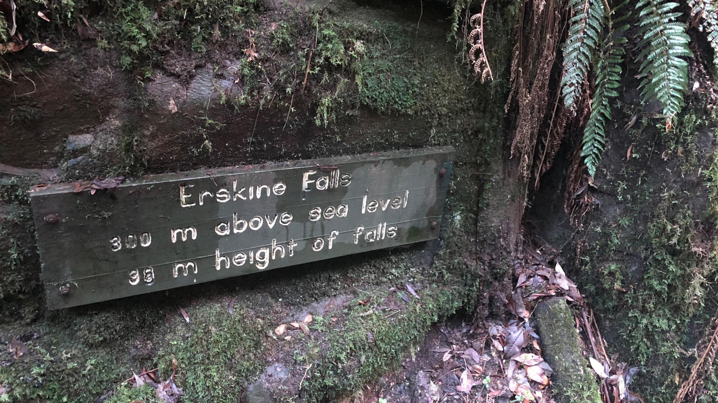 Erskine Falls - an easy hike
