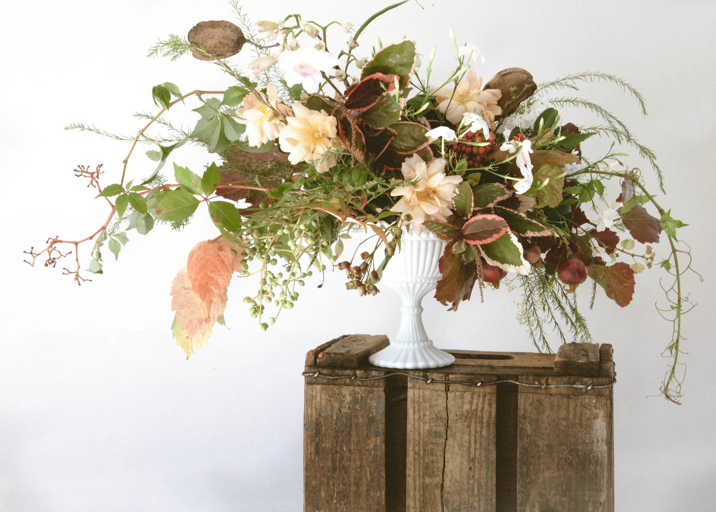 foraged.co.za | floral stylist | Janine Vermeulen