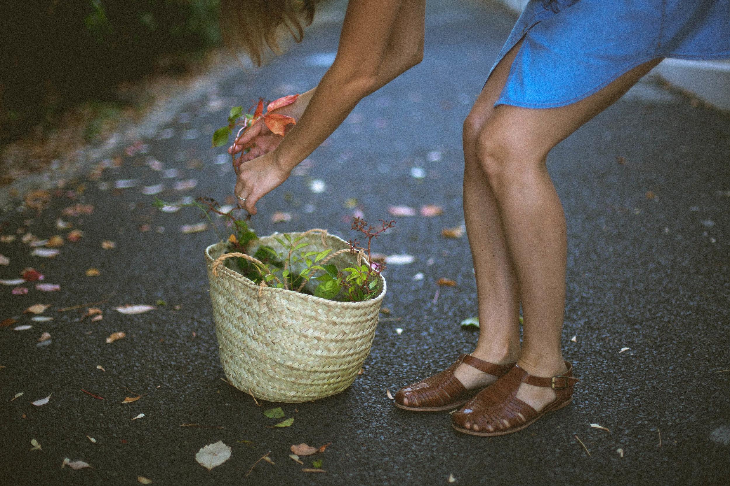 foraged.co.za | floral stylist | Janine Vermeulen