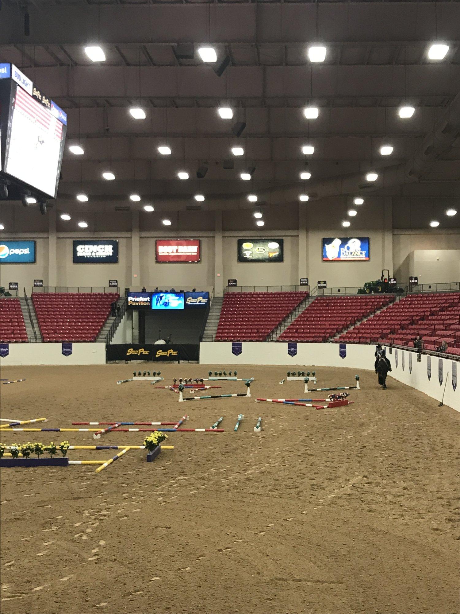 What Happens In Vegas, Stays In Vegas — All American Quarter Horse