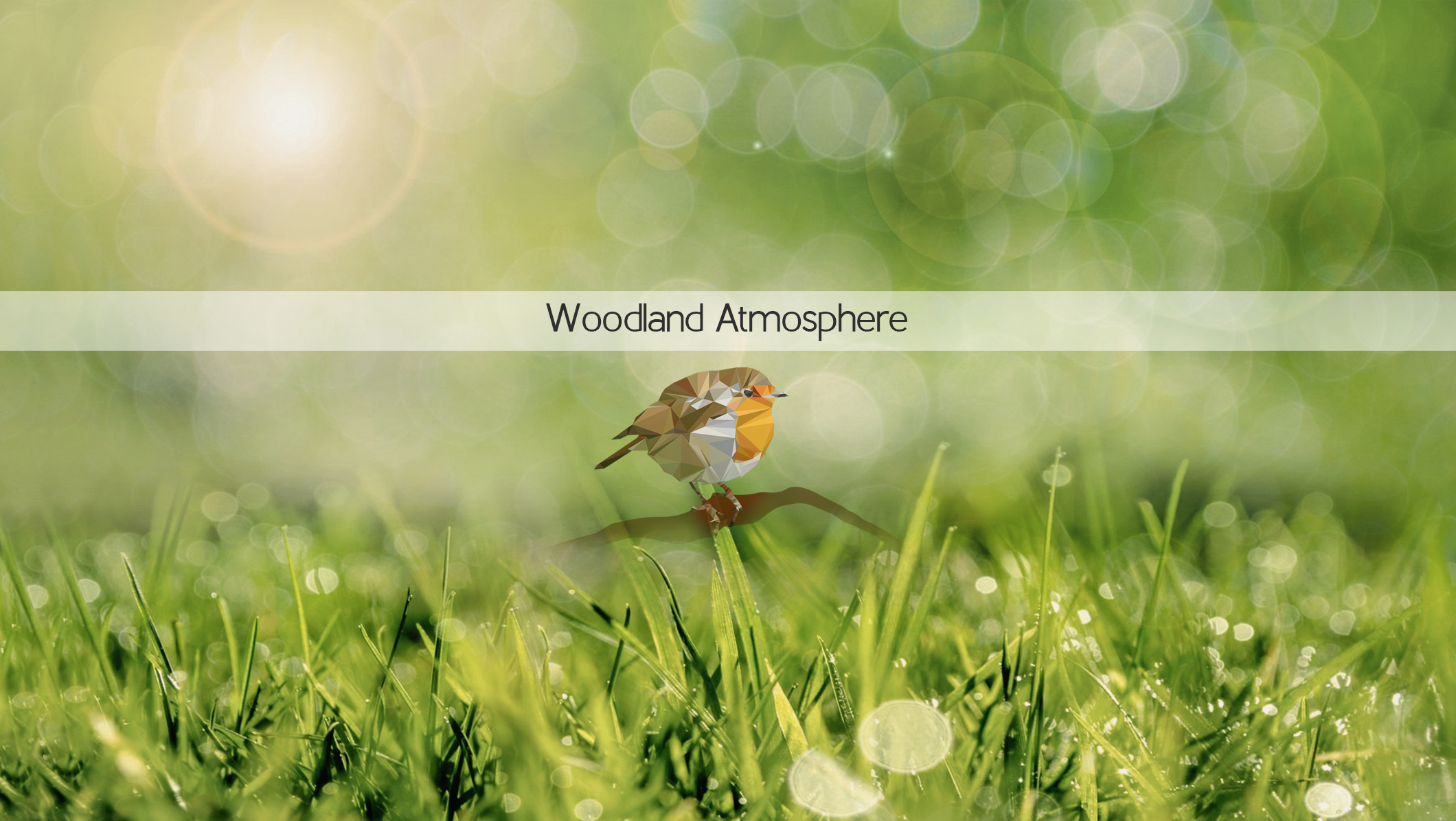 Click image to buy the Woodland Atmosphere library. Scroll down for free sound.