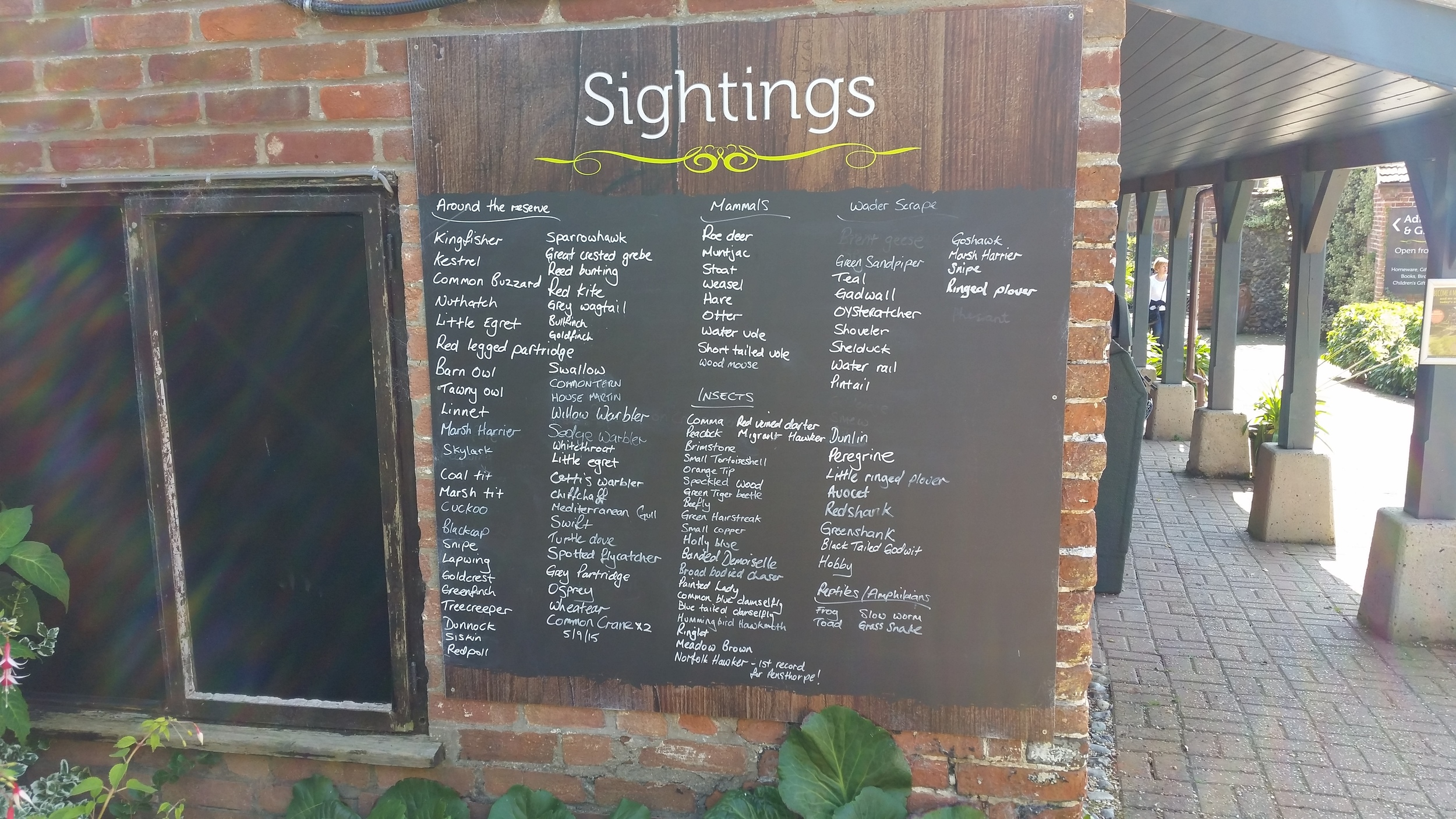 Always love seeing birdwatching records in areas I'm visiting