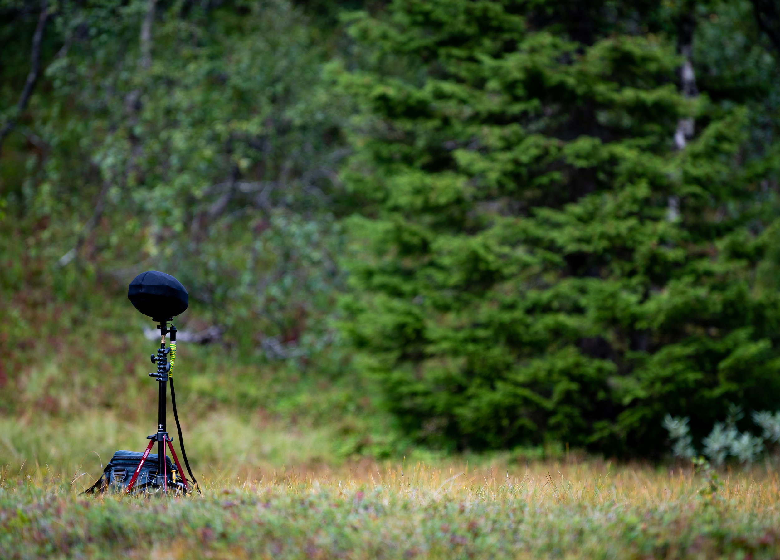 Ambience recording with the Sound Devices Mixpre 10T
