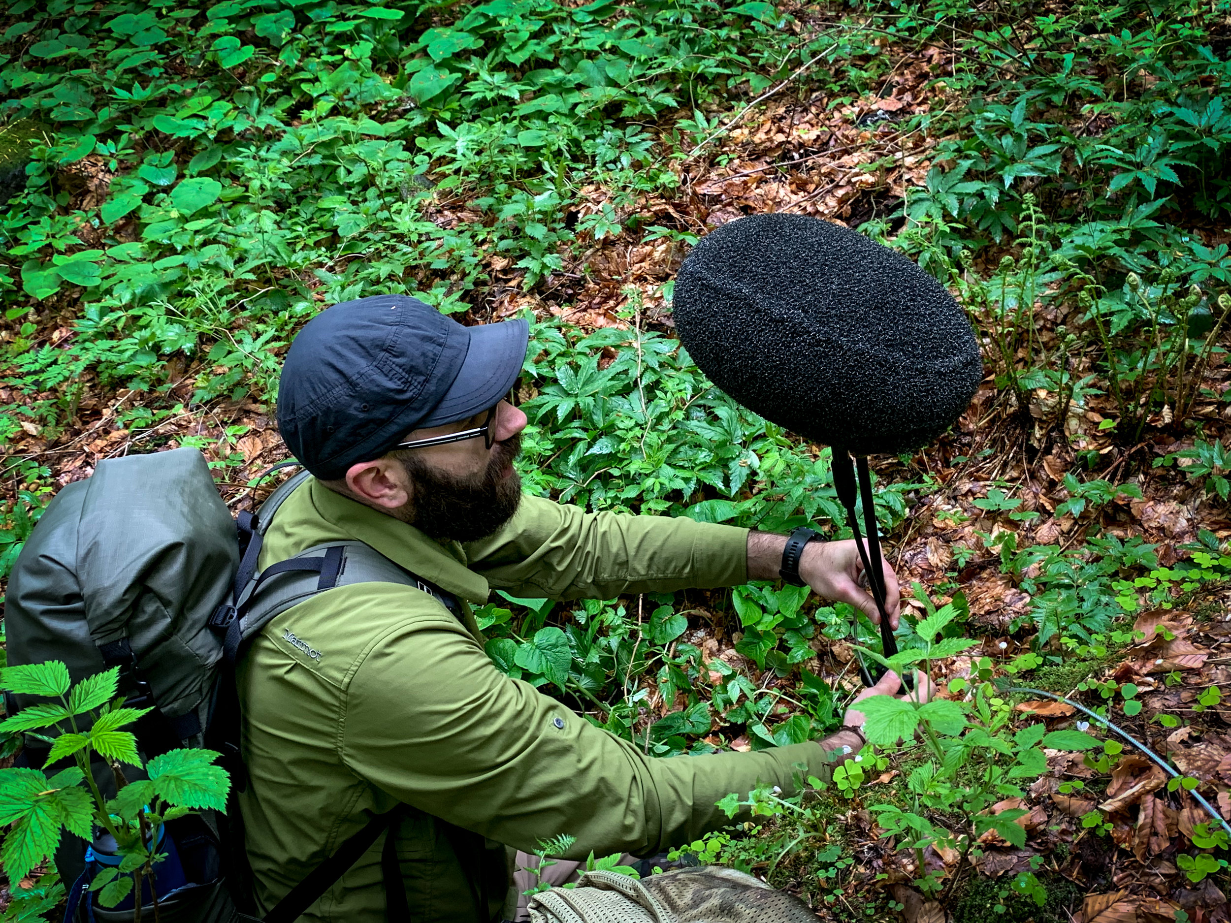 Field recording surround ambiences in Transylvania