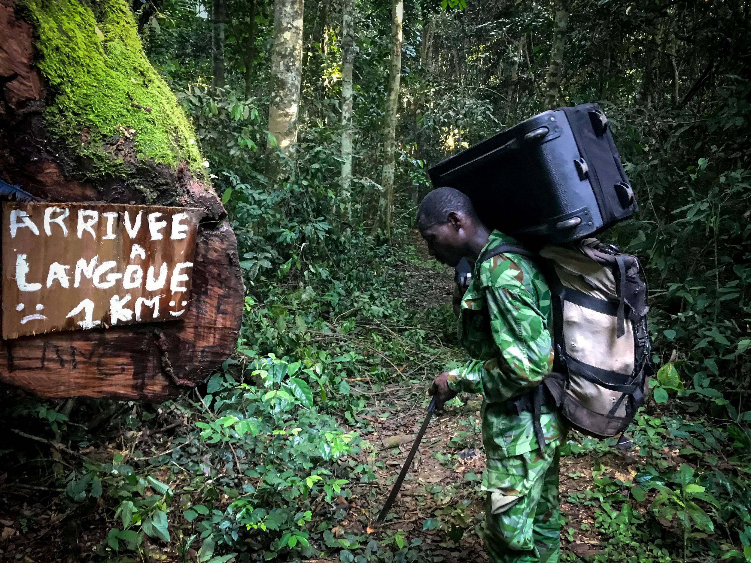 Ranger Evelin almost at Langoue Bai